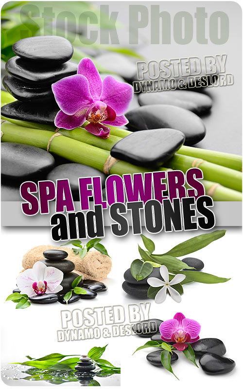 Spa flowers and stones - UHQ Stock Photo