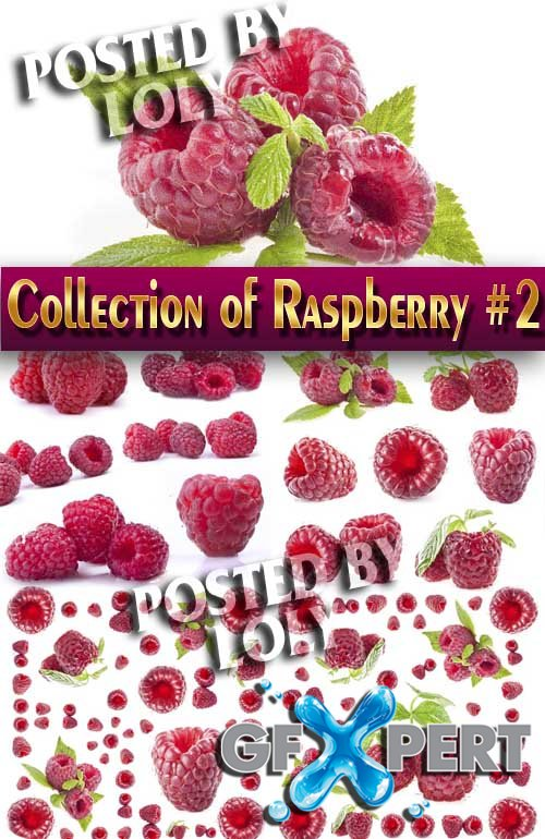 Food. Mega Collection. Raspberries #2 - Stock Photo