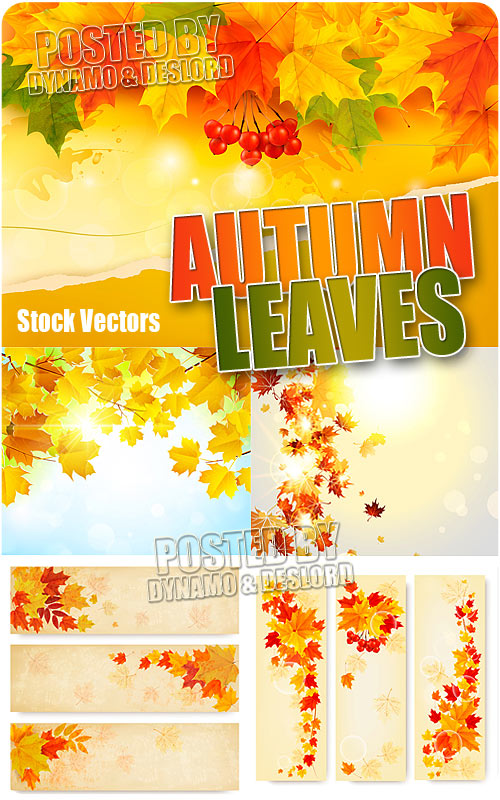 Autumn leaves - Stock Vectors