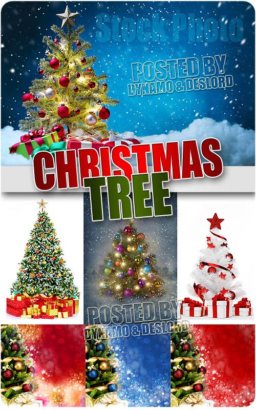 Christmas Tree - UHQ Stock Photo