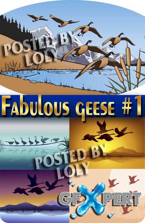 Fabulous geese #1 - Stock Vector