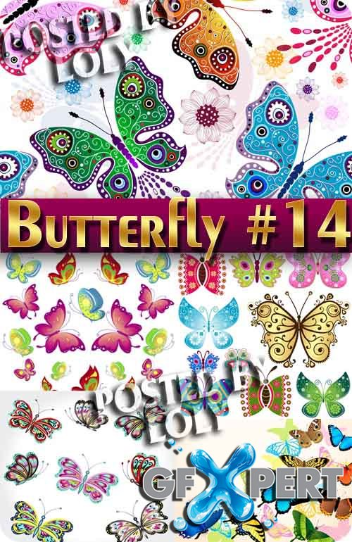 Beautiful butterfly #14 - Stock Vector