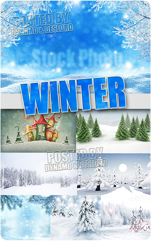 Winter - UHQ Stock Photo