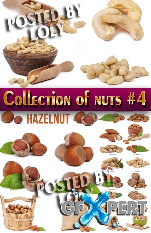 Food. Mega Collection. Nuts #4 - Stock Photo