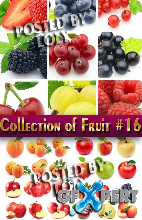 Food. Mega Collection. Fruit #16 - Stock Photo