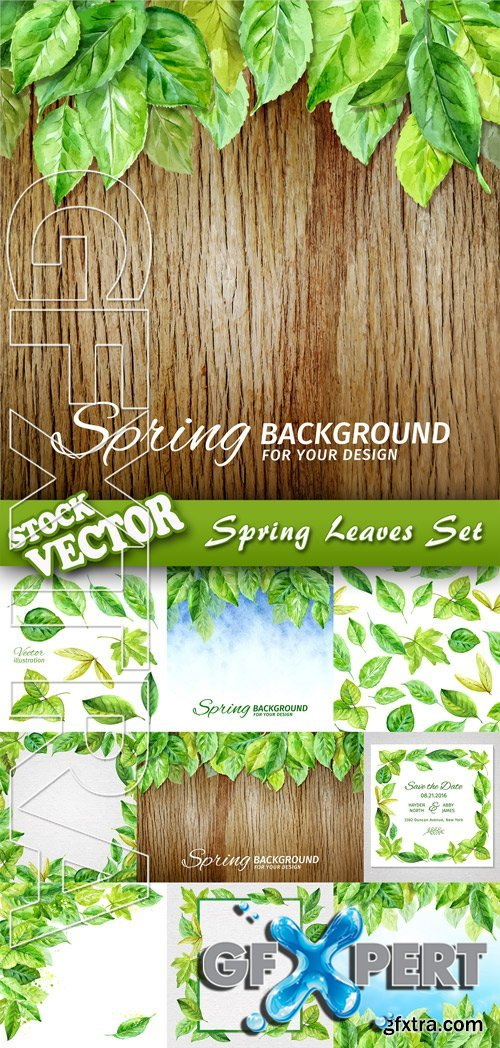 Stock Vector - Spring Leaves Set