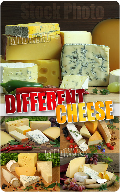 Different cheese - UHQ Stock Photo