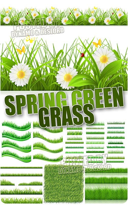 Spring grass - Stock Vectors