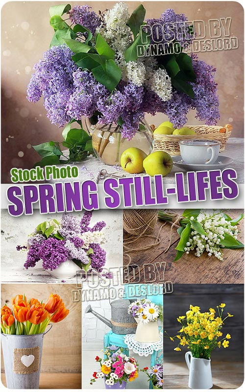Spring Still-lifes - UHQ Stock Photo