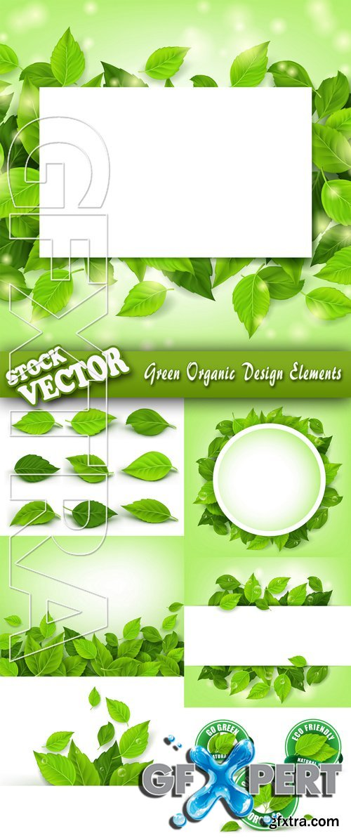 Stock Vector - Green Organic Design Elements