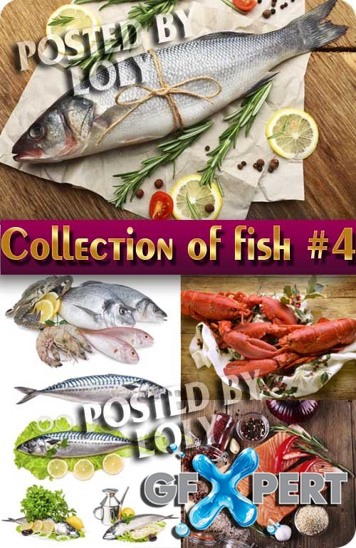 Food. Mega Collection. Fish #4 - Stock Photo