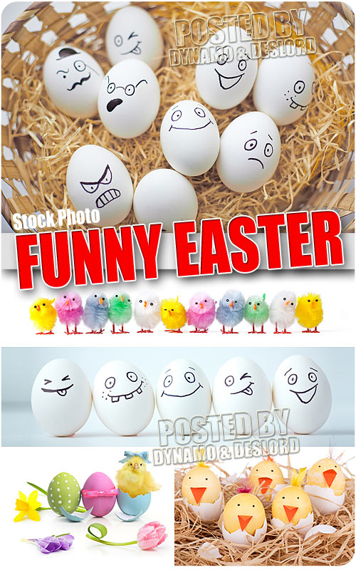 Funny Easter - UHQ Stock Photo