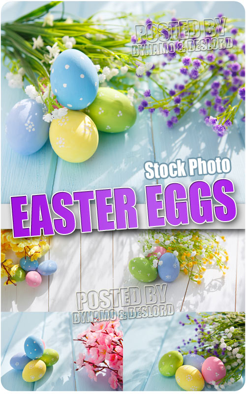 Easter Eggs - UHQ Stock Photo
