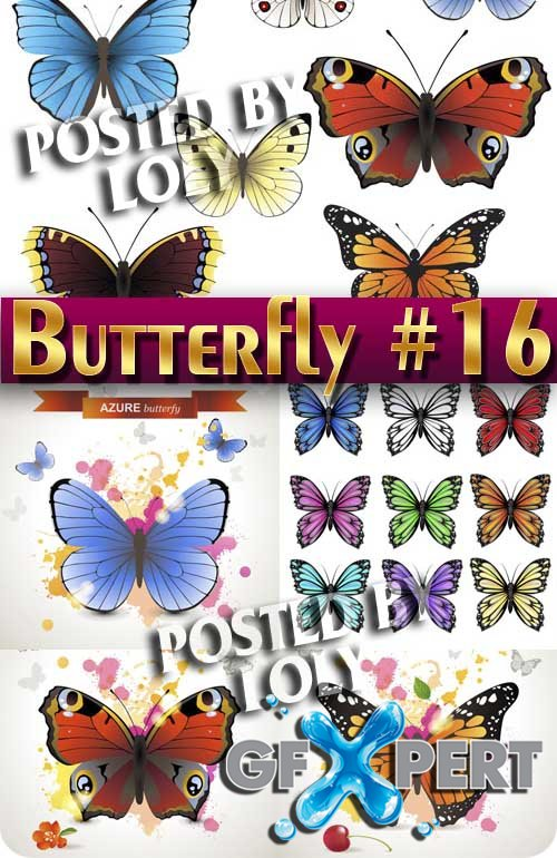 Beautiful butterfly #16 - Stock Vector
