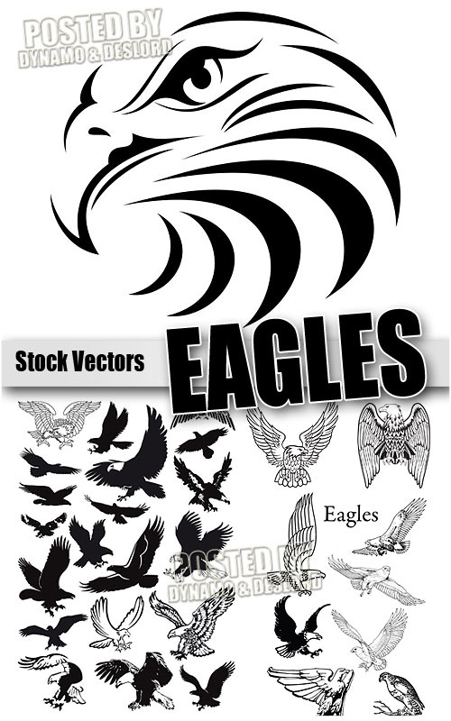 Eagle - Stock Vectors