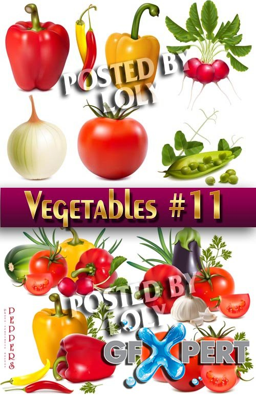 Fresh vegetables #11 - Stock Vector