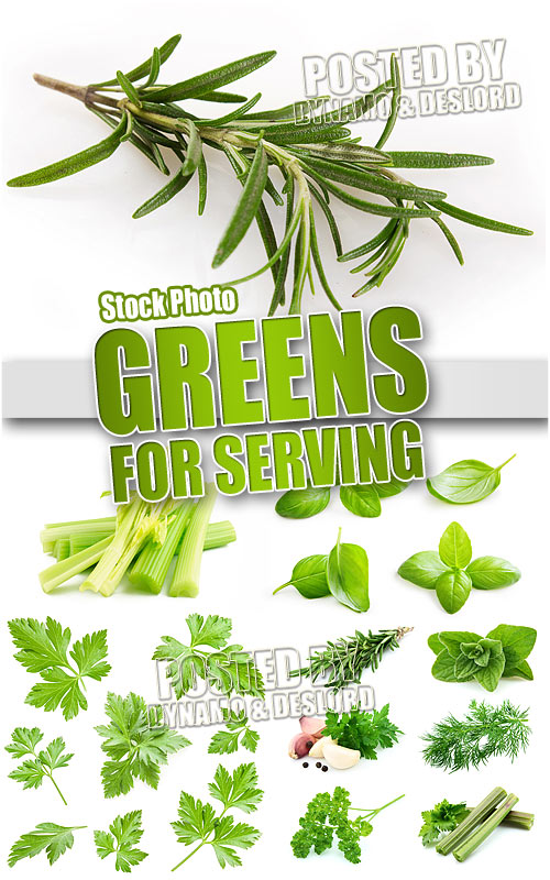Greens for serving - UHQ Stock Photo