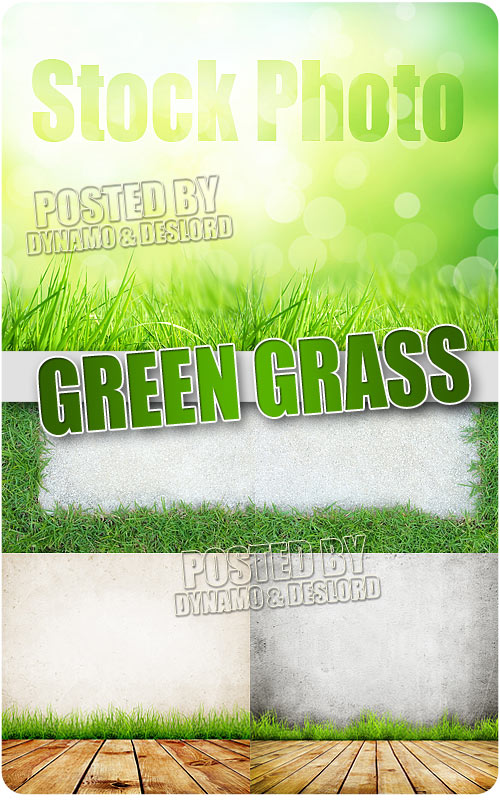 Green grass - UHQ Stock Photo