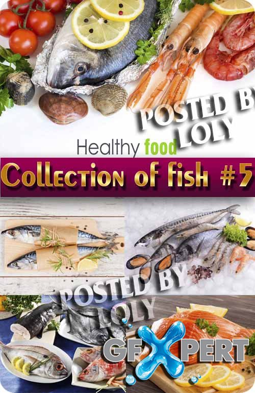 Food. Mega Collection. Fish #5 - Stock Photo