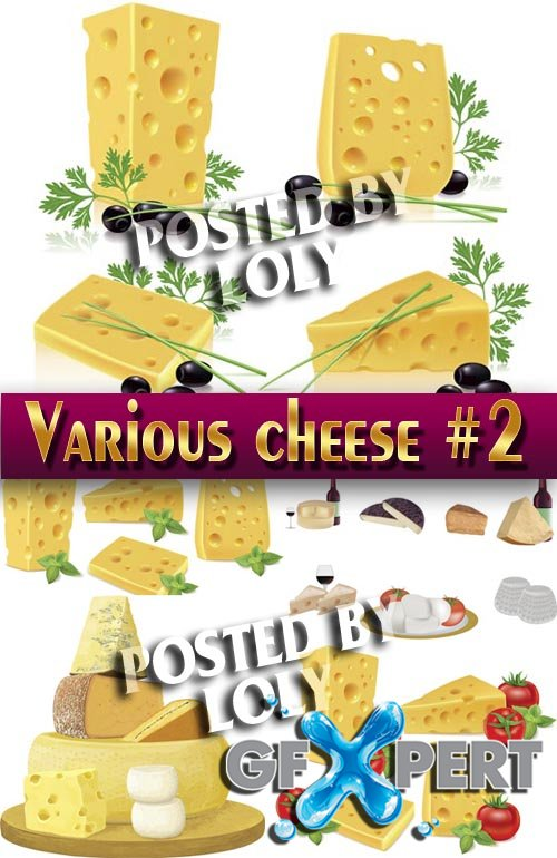 Sorts of cheese #2 - Stock Vector