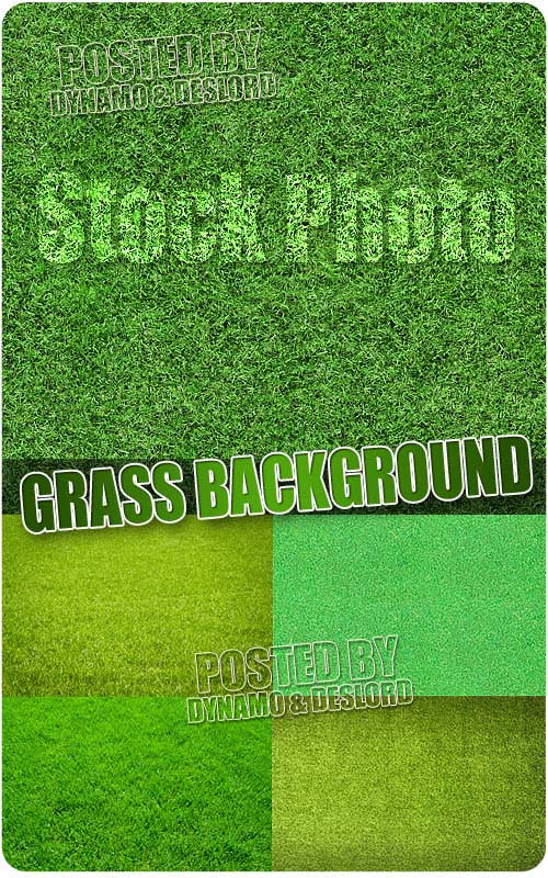Grass background - UHQ Stock Photo