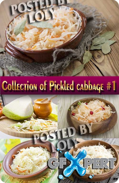 Food. Mega Collection. Pickled cabbage #1 - Stock Photo