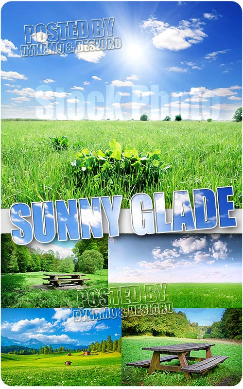 Sunny Glade 2 - UHQ Stock Photo