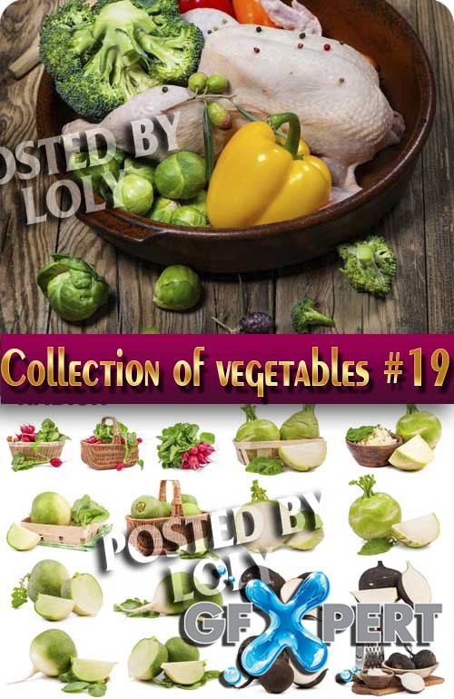 Food. Mega Collection. Vegetables #19 - Stock Photo