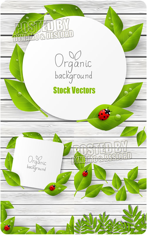 Organic backgrounds - Stock Vectors