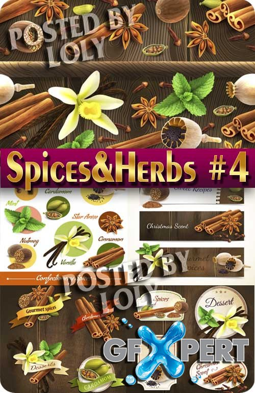 Spices and Herbs #4 - Stock Vector