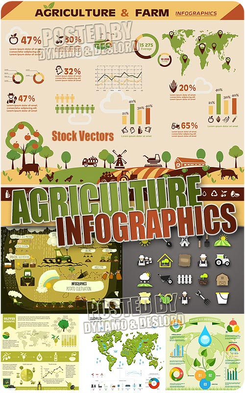 Agriculture  infographics - Stock Vectors