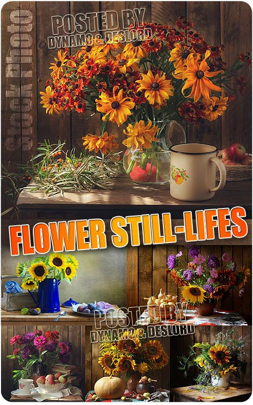 Flowers Still-lifes - UHQ Stock Photo