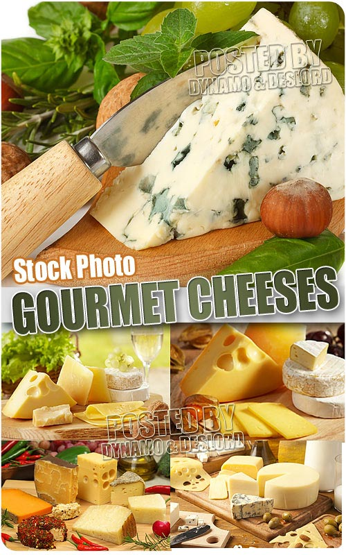 Gourmet cheeses - UHQ Stock Photo