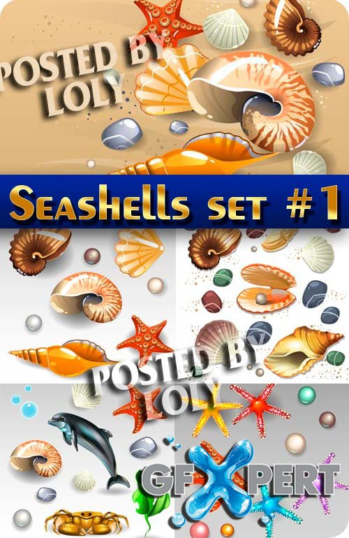 Collection of seashells #1 - Stock Vector