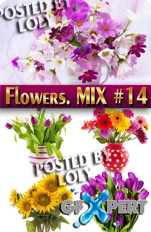 Flowers Mix #14 - Stock Photo