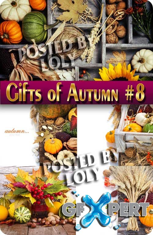 Gifts of Autumn #8 - Stock Photo