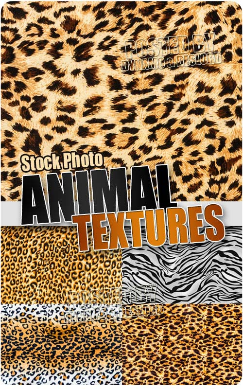 Animal textures - UHQ Stock Photo