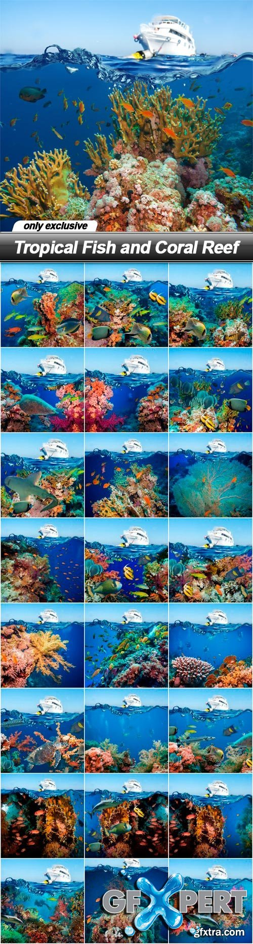 Tropical Fish and Coral Reef - 25 UHQ JPEG