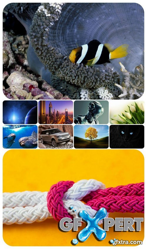Beautiful Mixed Wallpapers Pack 369