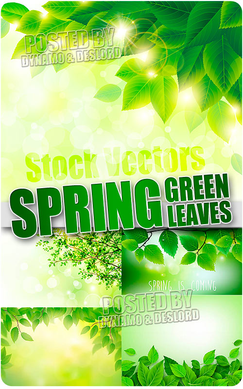Spring green leaves - Stock Vectors