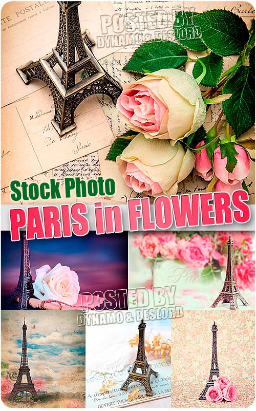 Paris with flowes - UHQ Stock Photo