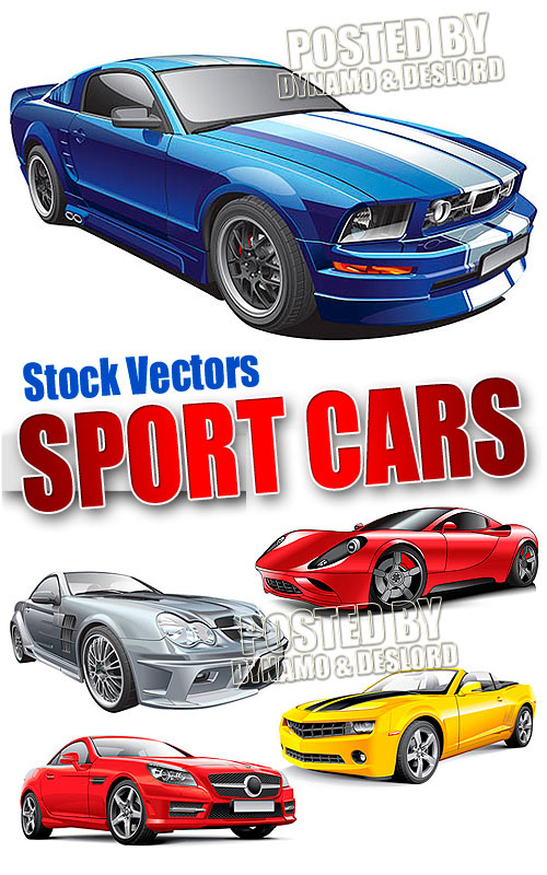 Sport cars - Stock Vectors