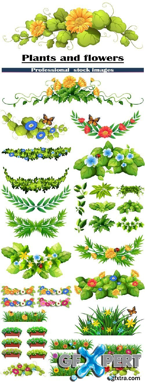 Stock vector Plants and flowers