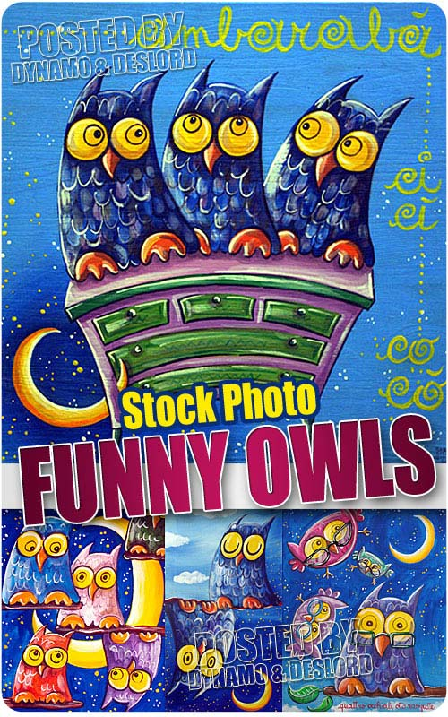 Funny Owls illustrations - UHQ Stock Photo