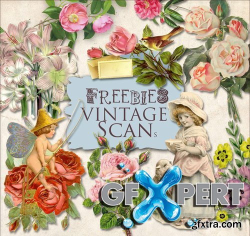 Scrap Kit - Vintage Flower Illustrations