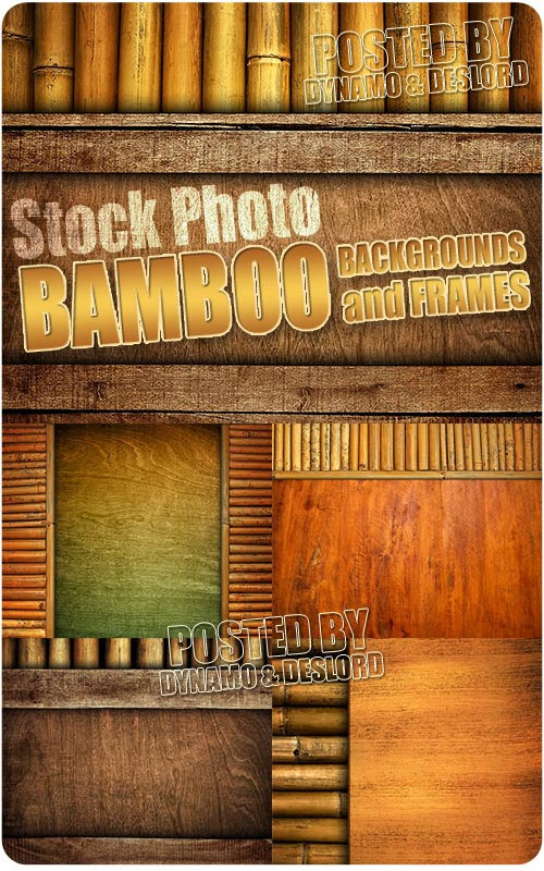 Bamboo backgrounds and frames - UHQ Stock Photo