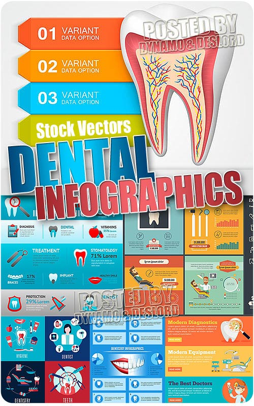 Stomatology infographic - Stock Vectors