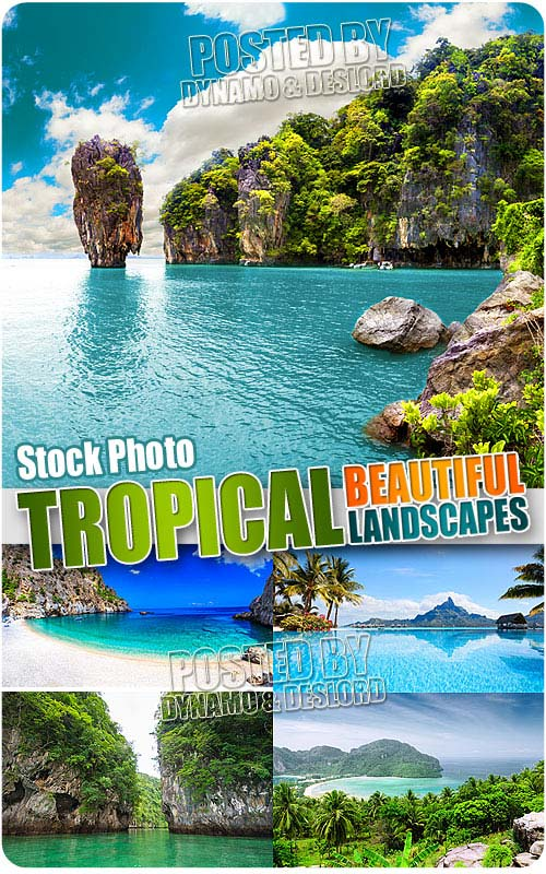 Beautiful landscape tropical - UHQ Stock Photo