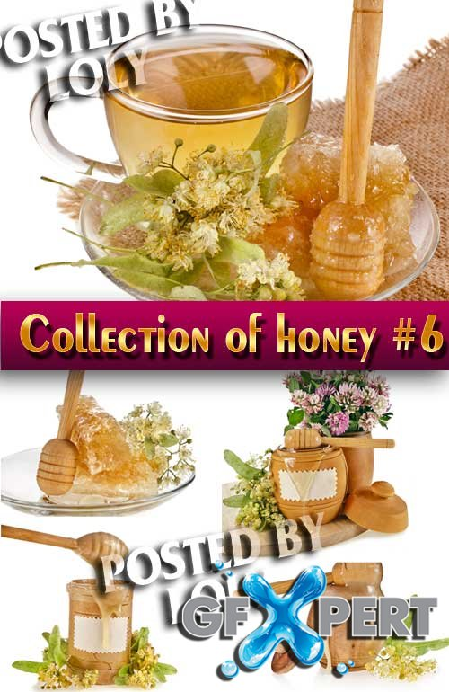 Food. Mega Collection. Honey #6 - Stock Photo