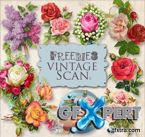 Scrap Kit - Vintage Flower Illustrations, part 5